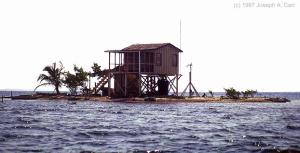 house-on-stilts-island3